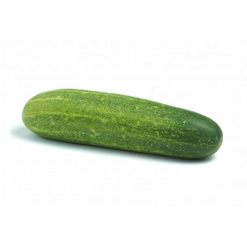 Cucumber Desi  Fresh