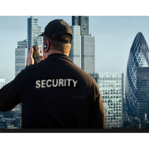 Corporate Unarmed Infrastructural Security Services