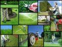 Gardens Maintenance Service