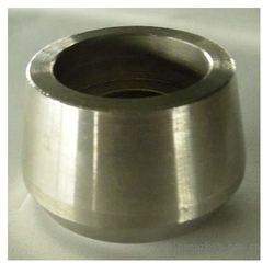 Stainless Steel 304 Weldolets
