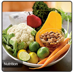 Nutrition Consultancy Service