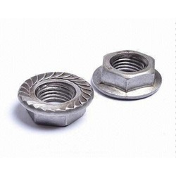 Flange Hex Nut