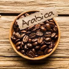 Image result for coffee arabica