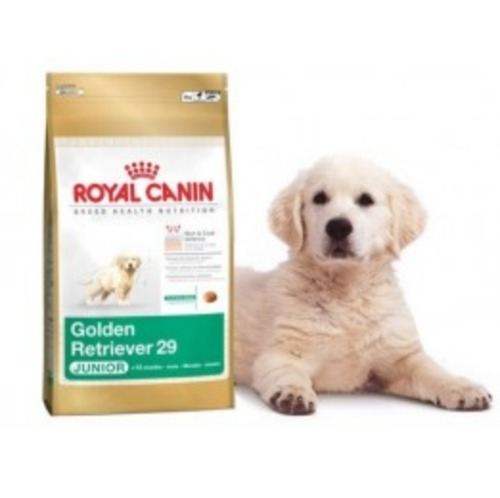 Royal Canin Dry Dog Food Golden Retriever Junior 3kg At Rs 1940