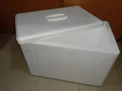 White Thermocol Ice Box, Density: 10 kg/cubic-meter
