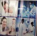 Typhoid Treatment Service