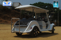 Vintage Buggy 8 Seater