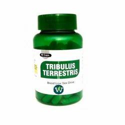 Tribulus Terrestris Capsule, 90 Capsule, Packaging Type: Bottle