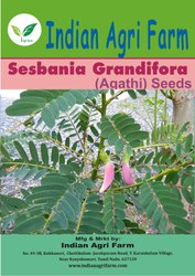 Agathi/Sesbania/Gaach- Munga
