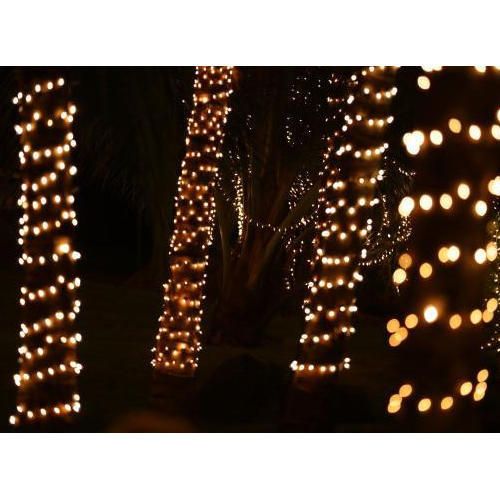 Electrolite Tree Light Rs 800 Number Electrolite Fitting Equipments Id 11684550812