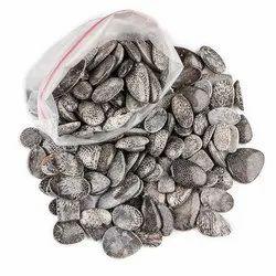 Natural Black Coral Cabochon Stone in Wholesale Bulk Assortment Gemstones