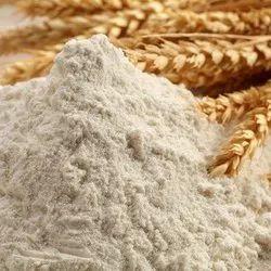 Organic Wheat Flour, 6 Month