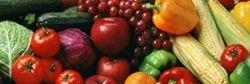 Horticultural Crop Processing Service