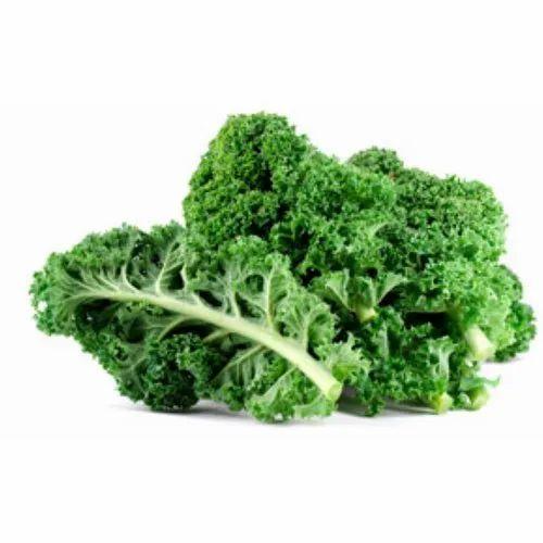 Fresh Kale Vegetable