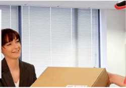 Export Courier Services