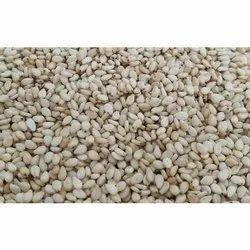 Shevri Seeds