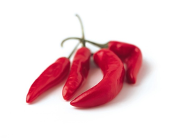 Red Chilli, Packaging: 10 kg