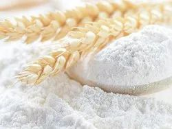 Starch Wheat Gluten