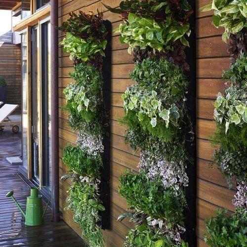 Amazing Artificial Outdoor Vertical Garden