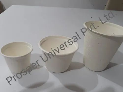 Biodegradable Coffee Cups, Capacity: 100 mL