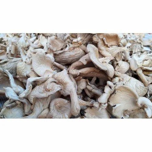 Organic Dry Mushroom, Packaging Type: PP Bag