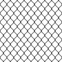 Steel Wire Screen