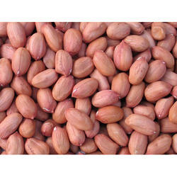 Somnath Packed Groundnut Seed, Packing Size: 25kg, Packaging Type: PP Bag