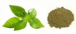 Tulsi Dry Extract
