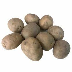 Kufri Jyoti Seed Potatoes