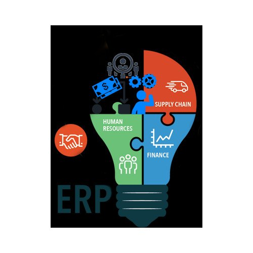 Chemical Industry ERP Software Development Service in Mahape