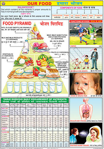 Full Color Laminated Paper Our Food For And Nutrition Chart Size 70x100 Cm