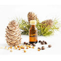Cedarwood Himalayan Oil