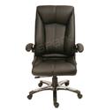 Chairman Chair