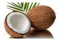 A Grade Organic Mature Coconut