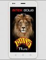 Intex Aqua Lion