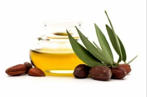 Jojoba Oil Golden (Cold Pressed) at Rs 1300/kilogram | Simmondsia Chinensis  Oil, जॉबोबा का तेल, जोजोबा ऑयल, जोजोबा का तेल - Kanth Saanvi Essentials,  New Delhi | ID: 21292385255
