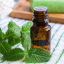 Mentha Citrata Oil Peppermint Oil Ex Mentha Arvenesis