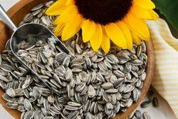 Organic Sunflower Seeds, Pack Size: 10 / 25 / 50 Kg