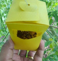 Insect Trap For Agri