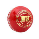 SS Gusty Synthetic Cricket Balls