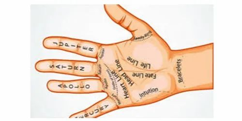 Vedic Astrology Predictions Astrology Services Astrology Support Jaipur Id 21535837862 Available in png and svg formats. vedic astrology predictions astrology
