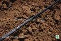 Flat Drip Irrigation Lateral
