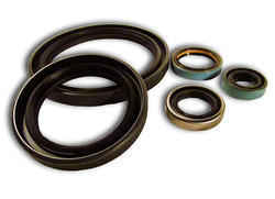Hydraulic Motor Seal Kit Service