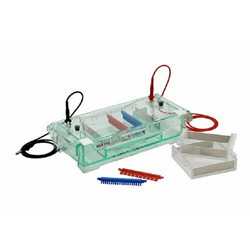 Gel Electrophoresis Equipment