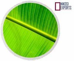 Green Round Shape Banana Leaf, Packaging Size: 5KG, 10KG