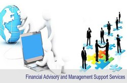 Financial Advisory and Management Support Services