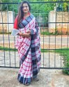 Siddhivinayak Handloom Cotton Slab Saree, 6 M (with Blouse Piece)