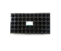 PVC 50 Cavity Trays, Thickness: 0.8 Mm