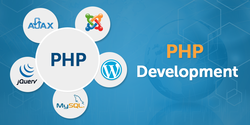 PHP Training Institute Services