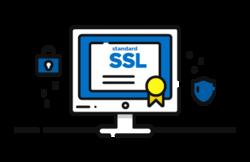 Website Security Certificate (SSL)